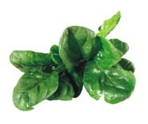 spinaci verdura di stagione