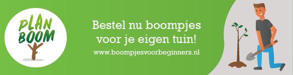 Banner Boompjes voor beginners Plan Boom