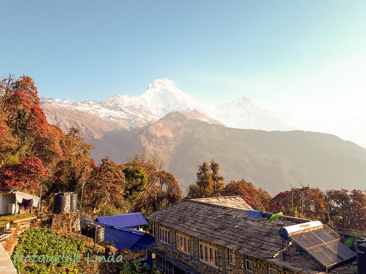 Natuurlijk Linda Nepal Annapurna