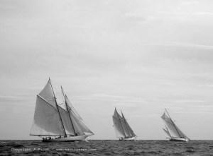 Voiles de St Tropez 2004 : un rassemblement spéctaculaire