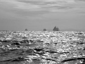 Voiles de St Tropez 2005 – L'au revoir