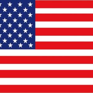 Bandiera Usa 20 X 30 Cm 35 444 01 Osculati