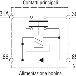 Staccabatteria Automatico 12 V 14 384 12 Osculati