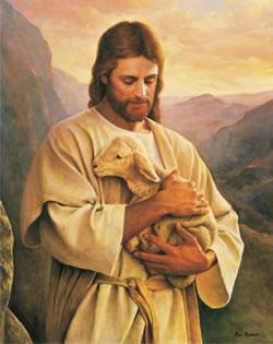 Jesús protege su oveja