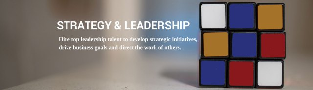 Strategy & Leadership