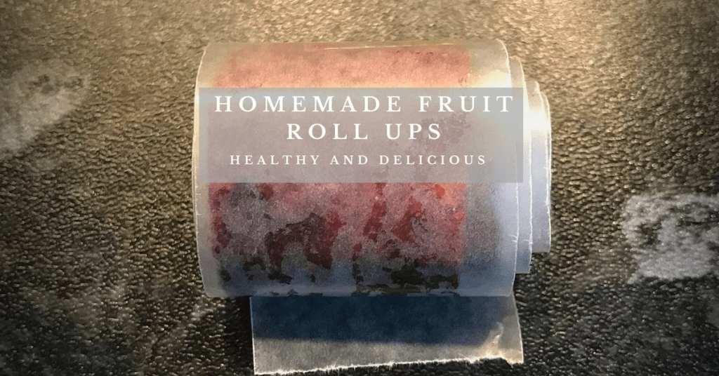 homemade fruit roll ups