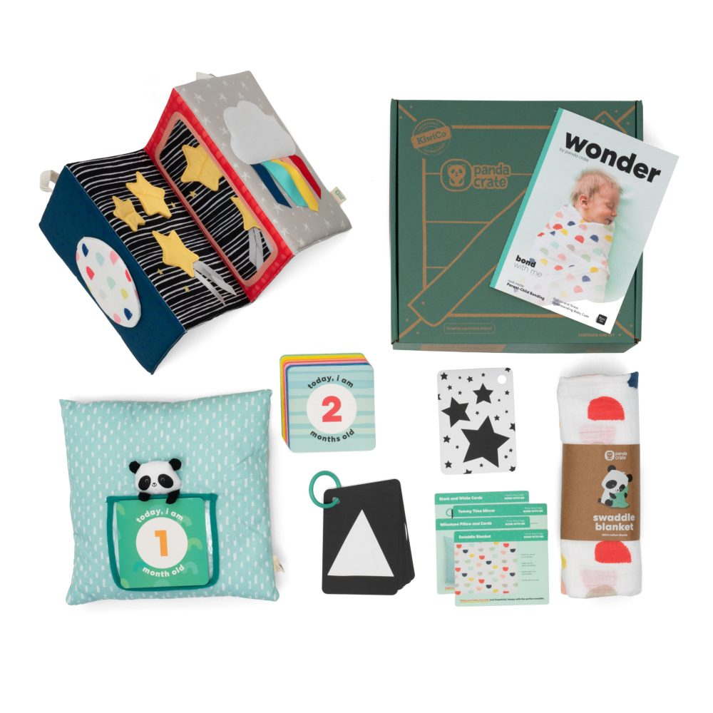 Panda Crate subscription box items in flatlay