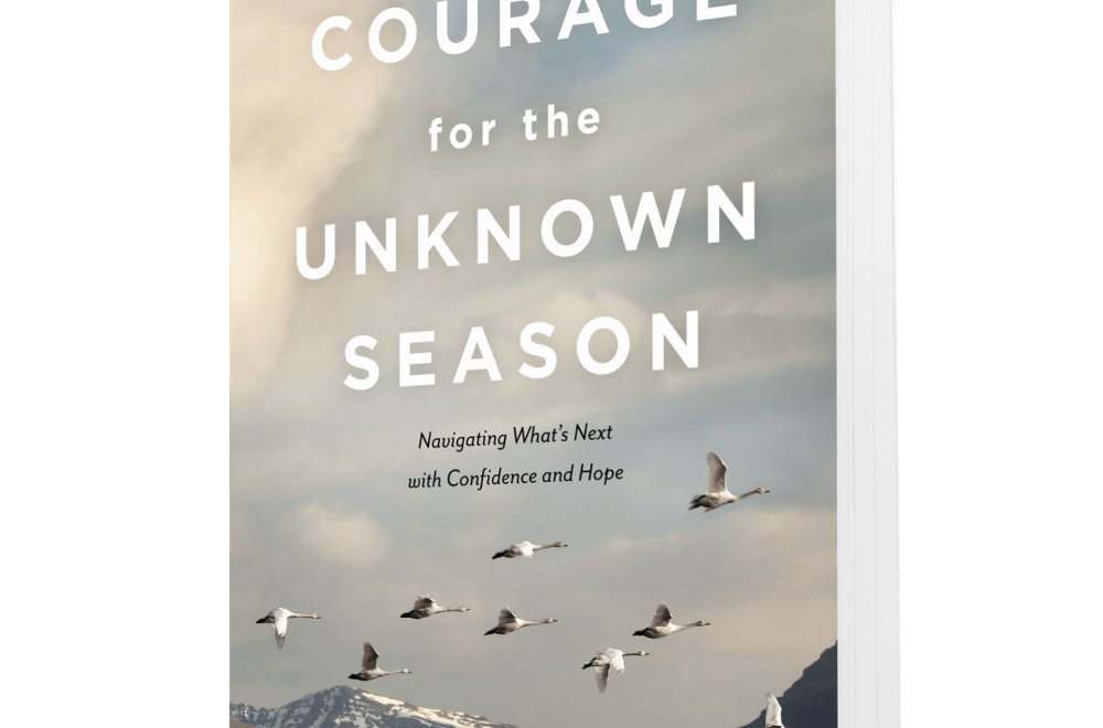 Courage for the Unknown Season — NavPress