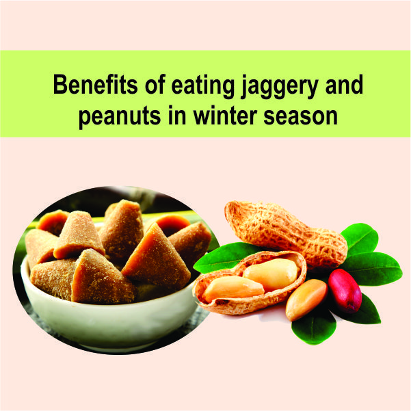 Benefits of eating jaggery and peanuts in winter season