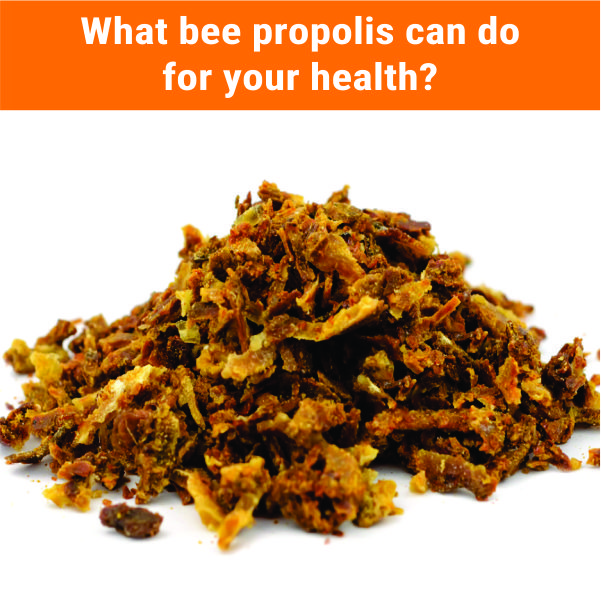 What can bee propolis do for your health?