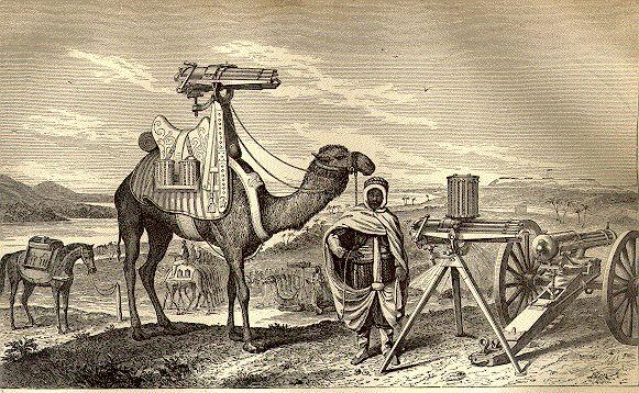 https://i2.wp.com/www.navyfrogmen.com/images/camel.JPG