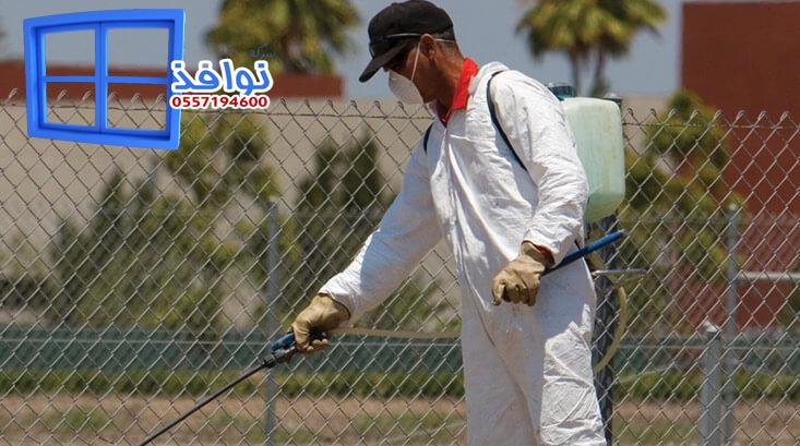 شركة مكافحة حشرات بحفر الباطن