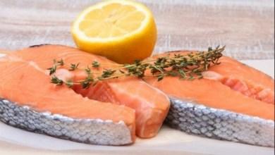30cf39624 هكذا تحمي الأسماك الدهنية من خطر السكري