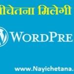 अब आपको WordPress पर मिलेगी नयीचेतना