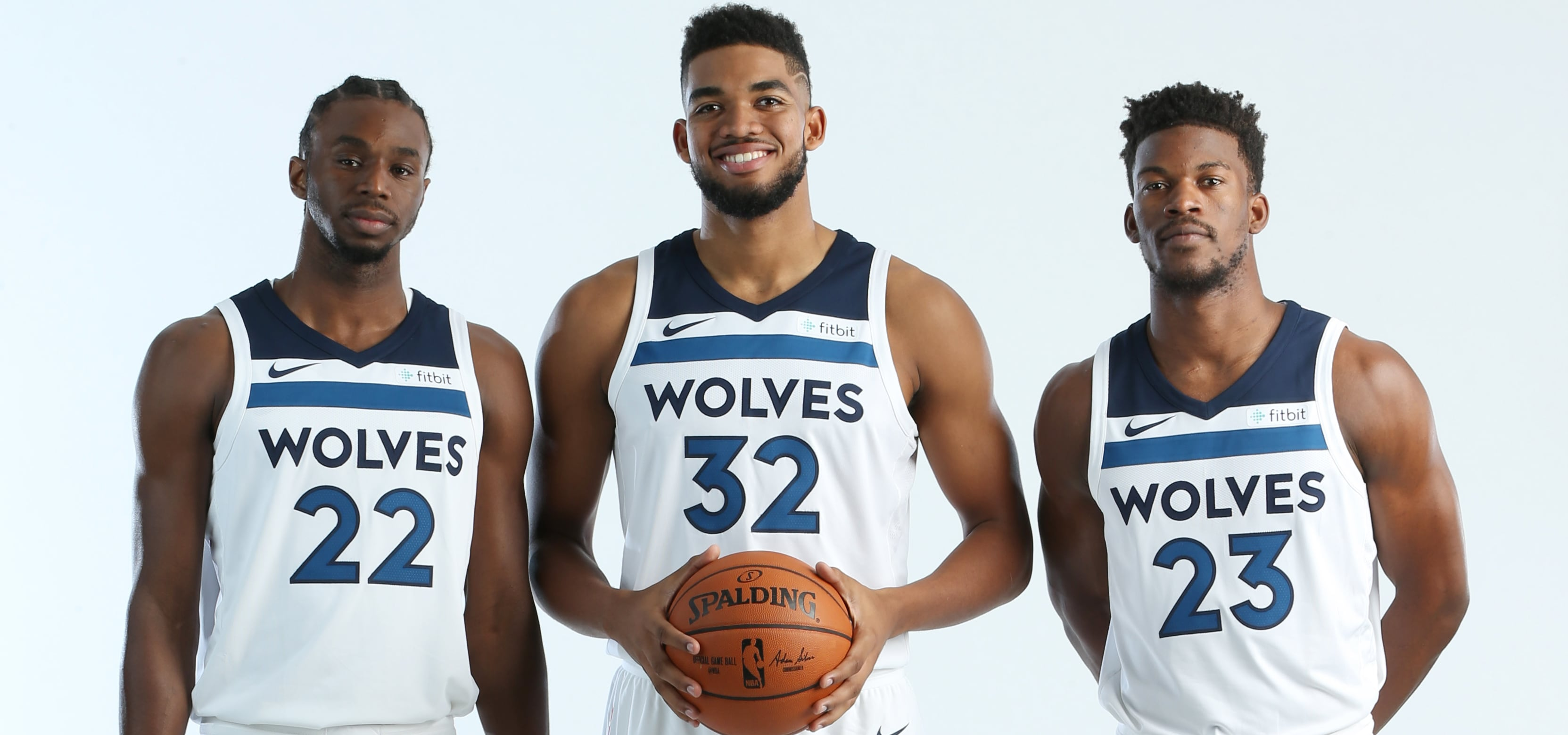 Image result for minnesota timberwolves
