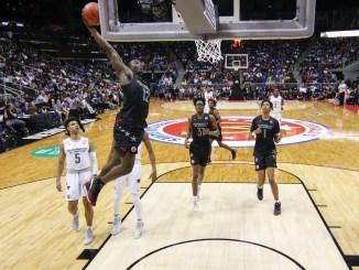 Zion Williamson, 2019 NBA Draft, NBA