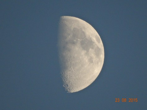 Thought the camera did a good job with this pic of the moon
