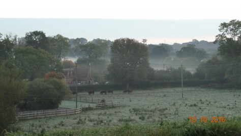 Monday morning mist at Rowington