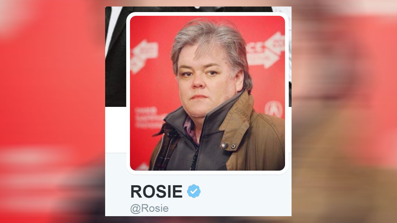 Rosie O'Donnell mirrors Steve Bannon in new Twitter pic