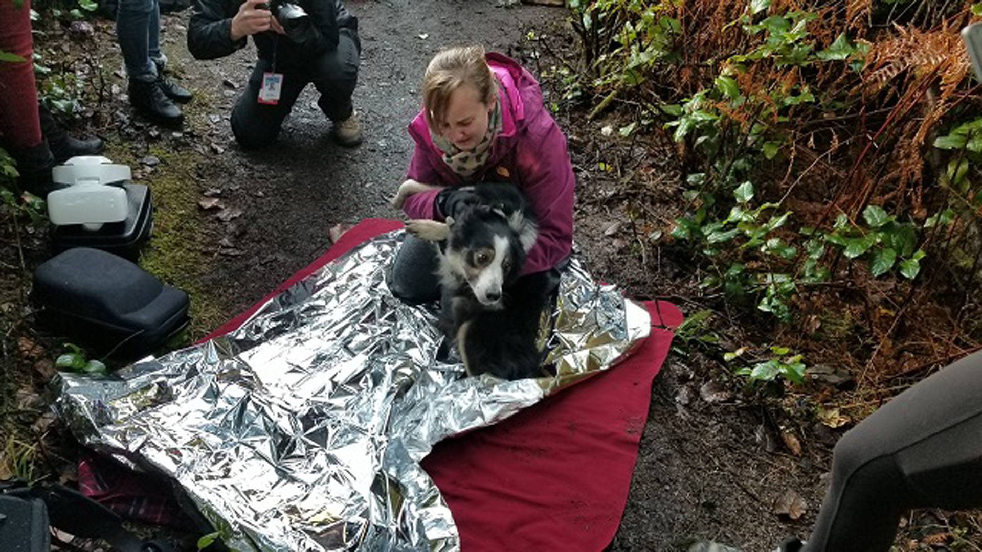 felix-the-dog-rescue-c-12262017_374917