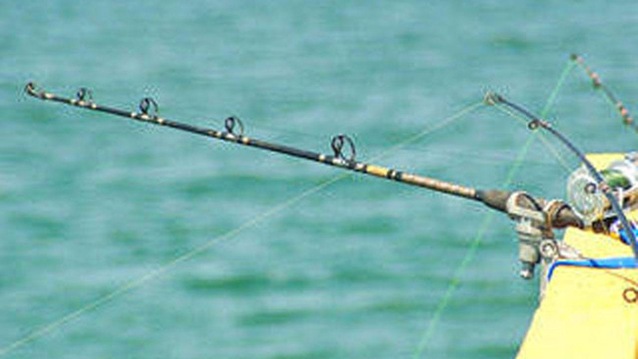 fishing-pole_315300