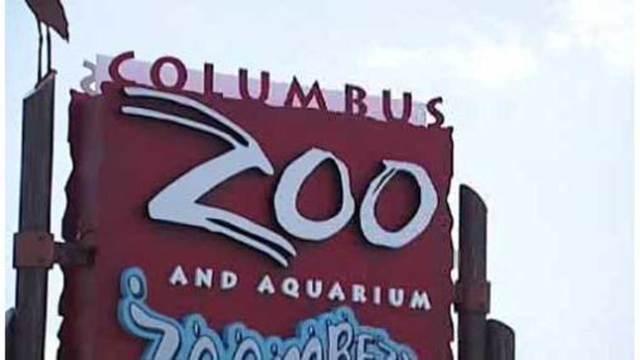 Columbus_Zoo_and_Aquarium_vying_for__USA_1_20190412104845