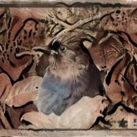 Birds deep dream art