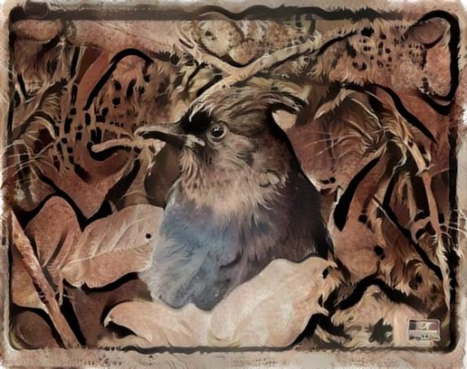 birds in deep dream 1
