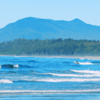Surfing at Pacific Rim National Park