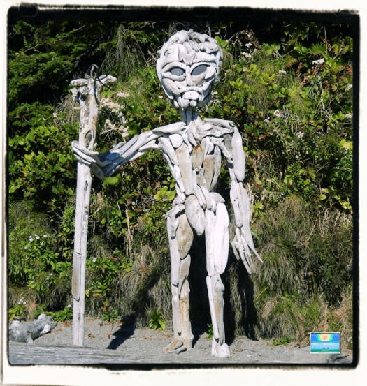 Florencia Bay beach driftwood man