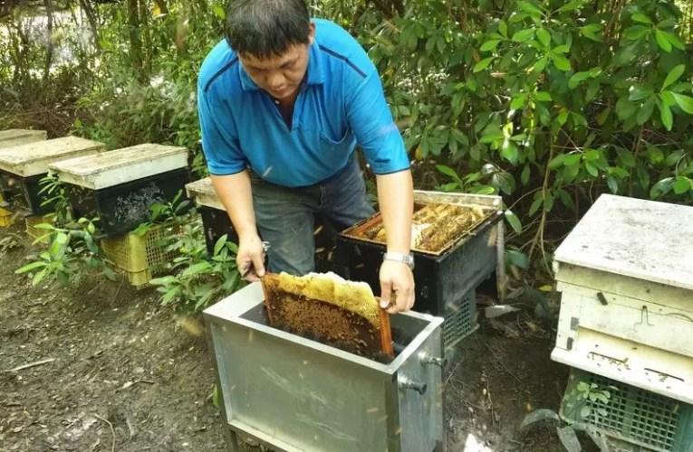 臺南市楠西區蜂業產銷班第3班 全國第一通過產銷履歷集團驗證
