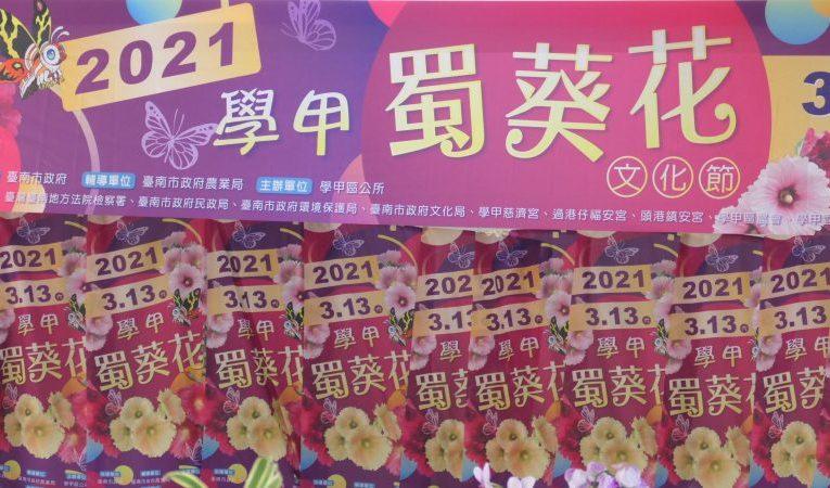 2021學甲蜀葵花文化節 3月13日來學甲觀賞蜀葵花