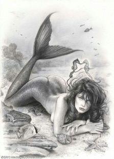 a3aeb8f71bb6e2518daaa11dc0062a51--tattoo-mermaid-a-mermaid