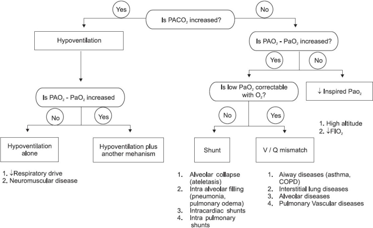Flow diagram showing approach to hypoxemic respiratory failure