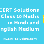 NCERT Solutions for Class 10 Maths in Hindi Medium