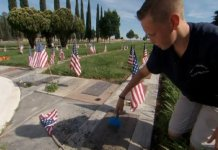 Boy Honors Veterans