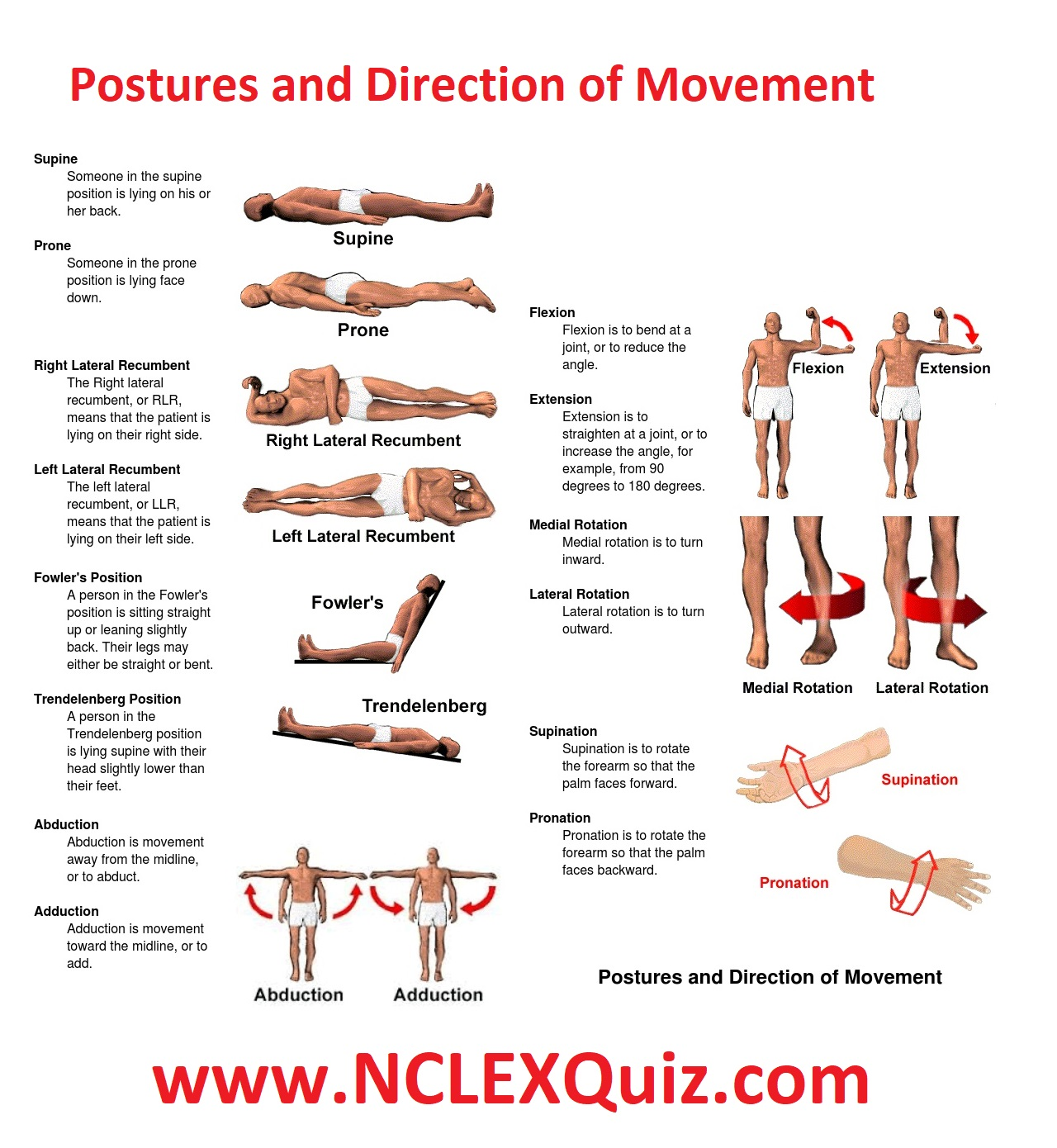 Patient Positioning Cheat Sheet For Nursing Students