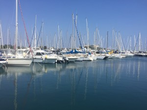 Sailboats in Port Vauban - Antibes