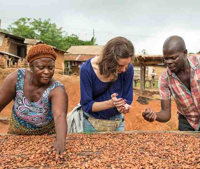 Two Women And Man Sort Through Cocoa Beans With Their Hands