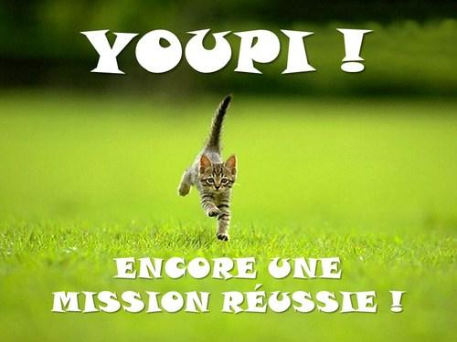 chaton-youpi-encore-une-mission-reussie-1