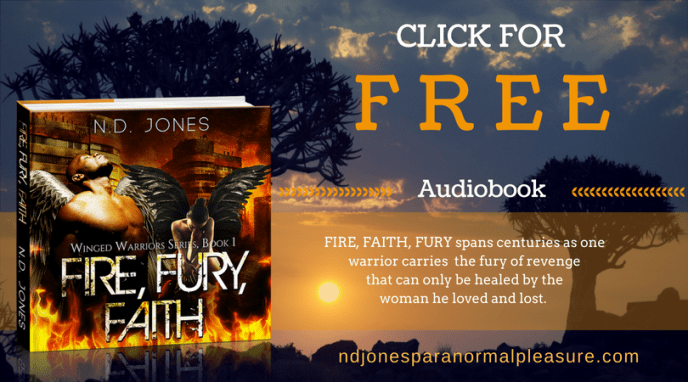 Fire Fury Faith Audiobook by ND Jones (1)