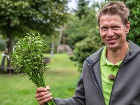 mein nachmittag garten garten: ideen und tipps für pflanzen | ndr.de - ratgeber