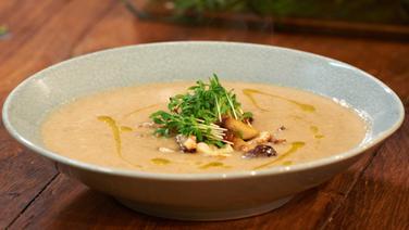 Mushroom soup served in a deep plate.  © NDR Photo: Matthias Haupt
