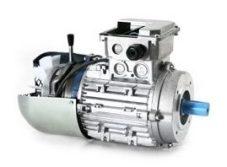 motori elettrici autofrenanti