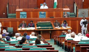 EDUCATIONMadonnna University: Reps urge school to release former students' transcripts