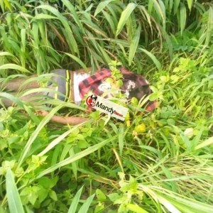 Student Of Michael Okpara University Of Agriculture, Umudike Shot Dead (Graphic)