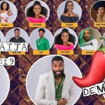 BBNaija 2019: How to vote for favourite housemates