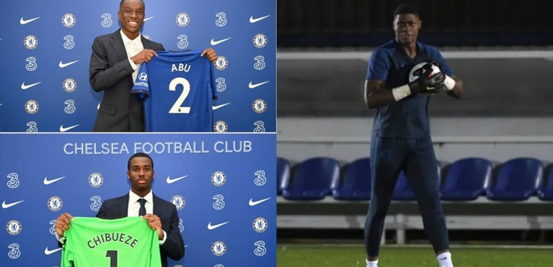 EPL: Three Nigerian stars sign deals with Chelsea