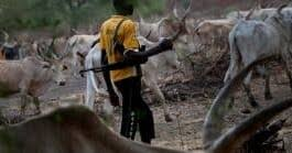 Gov. Udom's aide, Uwah raises alarm over invasion of farmland by herdsmen