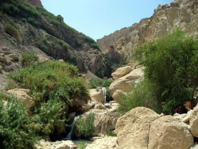 Cascades du Nahal David à En Gedi